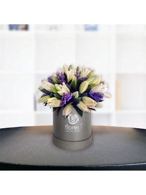 Lilis en Botón
